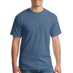 5000 Gildan Heavy Cotton 100% Cotton T Shirt